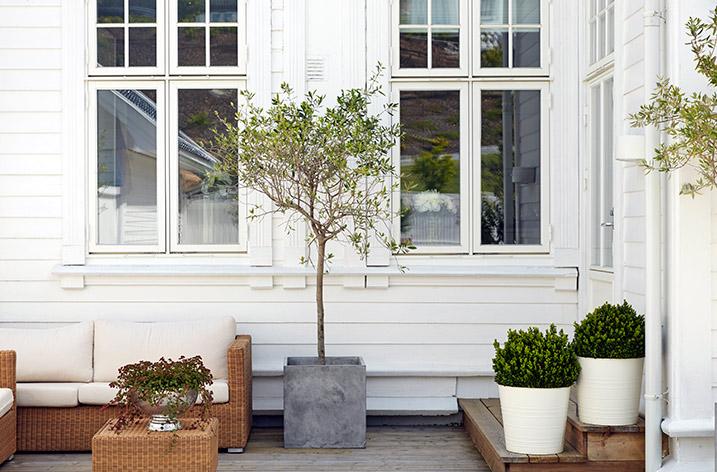 Måla huset vitt? Det här bör du tänka på