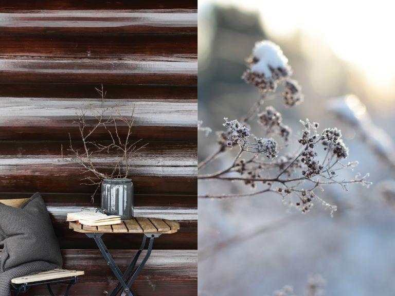 Vintermys i stugan